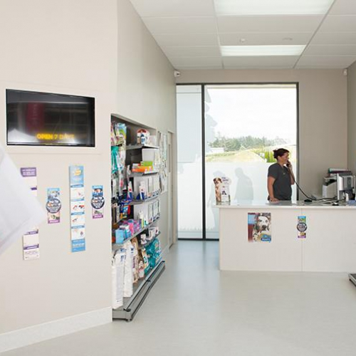 Veterinary Hospital Orewa & Millwater, suburb of Auckland